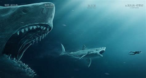 Great White Shark Hd The Meg Trailer And Poster Released Fizx