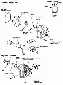 How Do I Replace The Ignition Module In The Distributor Of