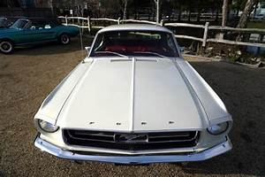 1967 Ford Mustang 289 Auto White - Muscle Car