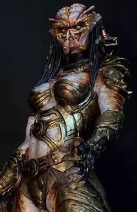 1000+ ideas about predator on Pinterest | Alien Vs ...