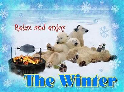 Winter Enjoy Fun Snow Happy Season Relax