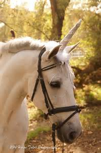 Unicorn Horn Costume for Real Live Horse includes Tail piece! (color options avail)