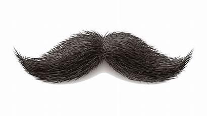 Mustache Moustache Transparent Clipart Background Hair Drawing