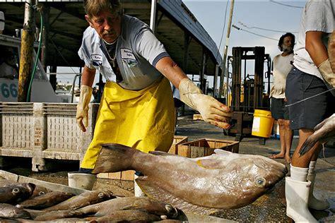 grouper fish york tale turns menu times