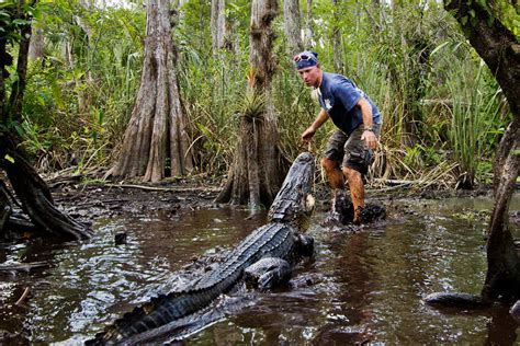Everglades Airboat Tours South Florida by Everglades Airboat Tour