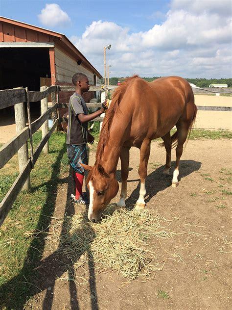 horse power xavier jewish lawson