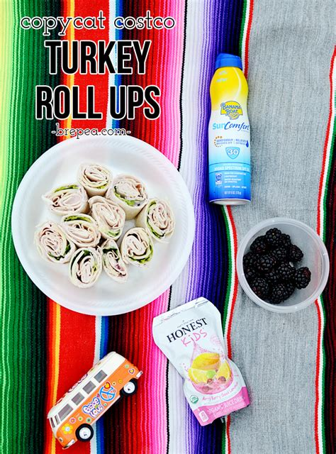 Costco Pontoon Boat 2015 by Perfect Picnic Food Copycat Costco Turkey Roll Ups