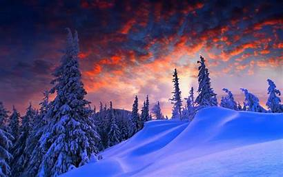 Snow Landscape Winter Trees Snowy Desktop Wallpapers