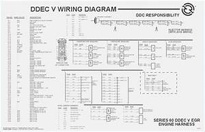 Detroit Diesel Series 60 Ecm Wiring Diagram