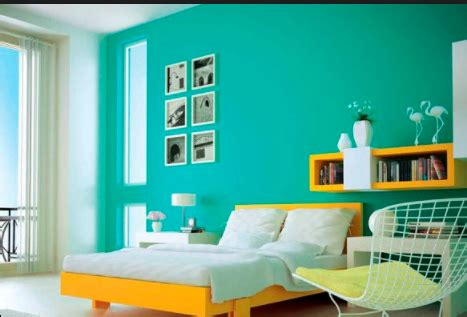 the types of paint used for interior wall painting home