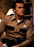 The Roles of a Lifetime: Michael Rooker :: Movies ...