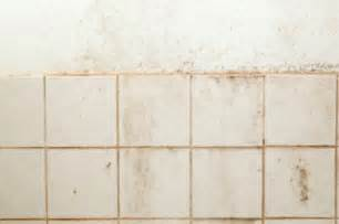 removing tile  plaster walls thriftyfun