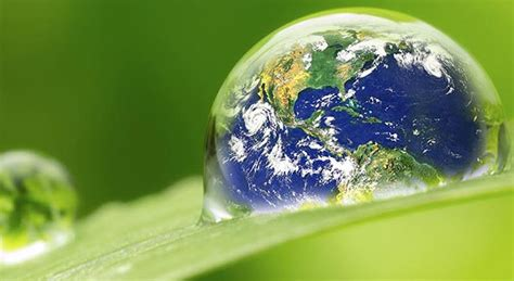 global environmental policy school  international