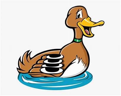 Duck Pond Clipart Bill Cartoon Background Transparent