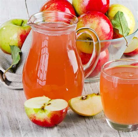 juice apple juicer blender recipe pot recipes without homemade apples juicers