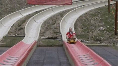 Speed Luge GIF - Find & Share on GIPHY