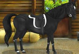 Pics Photos - Online Horse Game Ride Your Play Fun Games