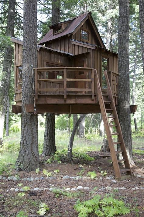 Treehouse By Pete Nelson, Star Of The Animal Planet Series