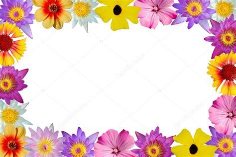 Borda floral — Fotografias de Stock © philipus #32030573