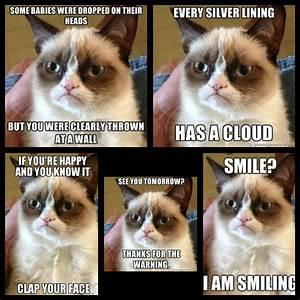 Grumpy Cat Quotes Titanic. QuotesGram
