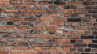 Brick Wall Bricks Background Surface Hdtv 1080p
