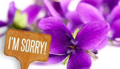Fiori Per Scusarsi Fiori Da Regalare Per Chiedere Scusa Quando Si Ha Davvero