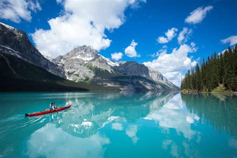 scenic photo worthy spots  canada  forest