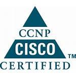 Cisco Ccnp Sertified Transparent Logos Vector