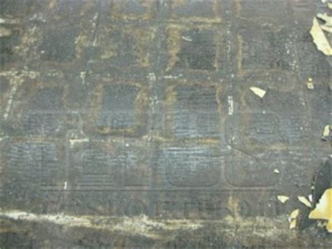 alternate  vct polished concrete flooring titus