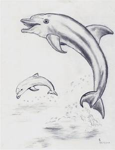 Dolphins Jumping from Water by BrellMacCahon on DeviantArt
