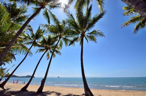 Palm Cove Accommodation Holiday Deals  Instant Online Quotes. Capricorn Caves. Fiesta Inn Mazatlan. Leaves Lodge & Spa. Nord Ondas Do Atlantico Hotel. Getaway On Grafton Hotel. Herrenkrug Parkhotel. Dhow Palace Hotel. Best Western Premier East Midlands Airport