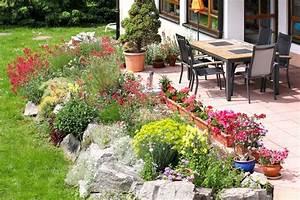 Die Schönsten Steingärten : pflanzen f r den steingarten unsere tipps dr garten ~ Bigdaddyawards.com Haus und Dekorationen