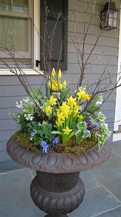 Flower Pot Outdoor Arrangement Spring Planters Porch