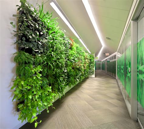 Artificial Light For Plants by Wall Of Plants Brings Benefits Artificial