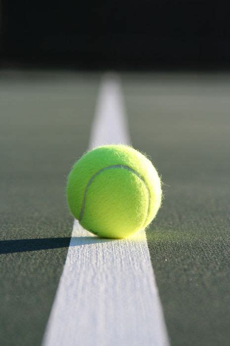 fabio fognini tennis  suddenly interesting  images  pinterest