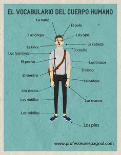 vocabulario  la clase de ele spanish
