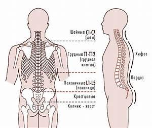 Лечение остеохондроза автор