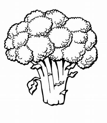 Coloring Pages Vegetables Vegetable Fruits Fruit Colouring