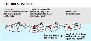 When Are Children Ready To Learn Breaststroke
