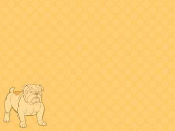 dog bulldog  powerpoint template
