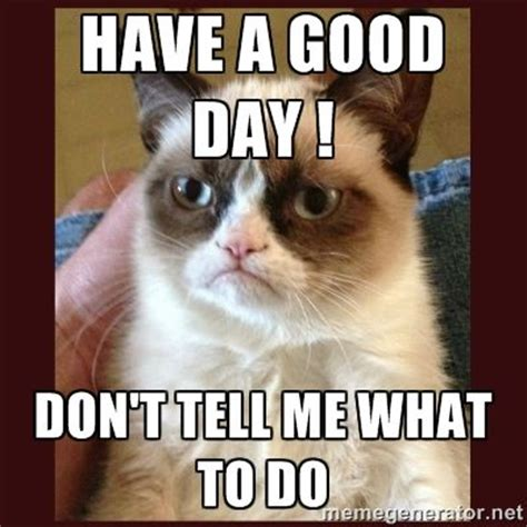 Don T Tell Me What To Do Meme - tard the grumpy pics day don t tell me what to do tard the grumpy cat meme generator