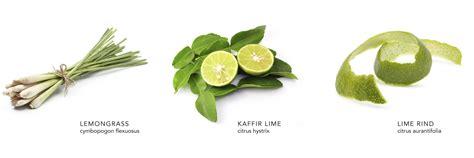 Thai Lemongrass Body Scrub, Detoxifies And Exfoliates, Dry