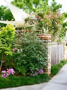 Hohe Sichtschutz Pflanzen : sichtschutz f r garten schirmen sie mit blumen und pflanzen ab ~ Sanjose-hotels-ca.com Haus und Dekorationen