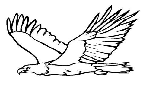 Bald Eagle Coloring Pages - Eskayalitim