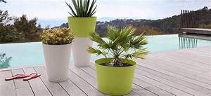 Plantes Grimpantes Pot Pour Terrasse : plante pour terrasse nord ouest id es de ~ Premium-room.com Idées de Décoration