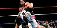 Hitman Hart: Wrestling with Shadows – National Canadian ...
