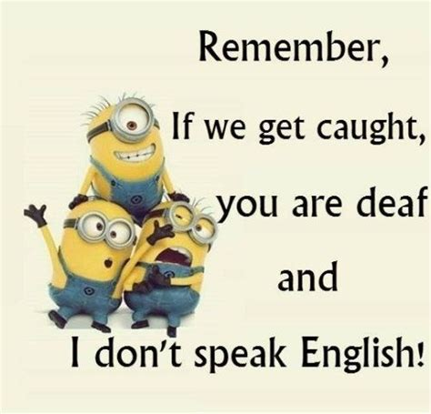funny minion quotes   day minions pinterest