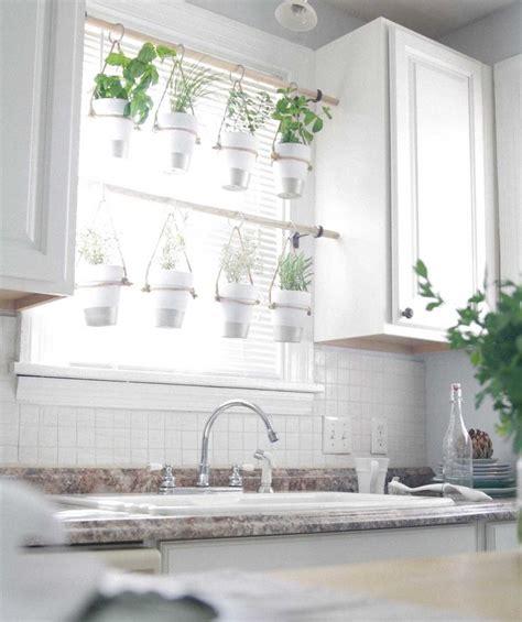 Indoor Window Herb Garden by Best 25 Window Herb Gardens Ideas On Growing