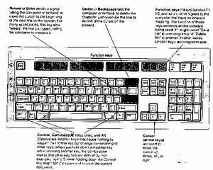 Parts of computer keyboard