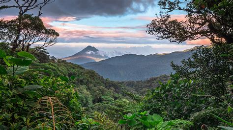 tropical biodiversity sustainability monteverde